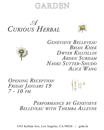 Alice Wang|Group Exhibition: A Curious Herbal
